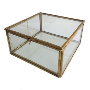 Large Glass Box Museum Artifact Davinci Code