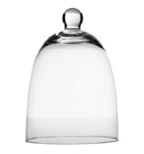 Glass Cloche serverware